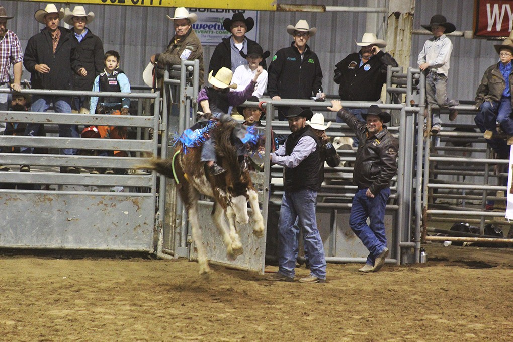Uinta County Herald Born To Be A Cowboy